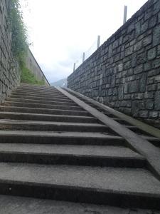 Trainingstreppe - schöne niedrige Stufen...