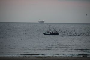 Krabbenfang...